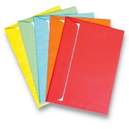 Obálka DL 11,4x22,9cm 100g barevná/25ks